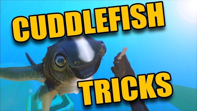 SUBNAUTICA - CuddleFish All Animations And Tricks - CUTE PET